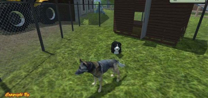 Dog soccer game online