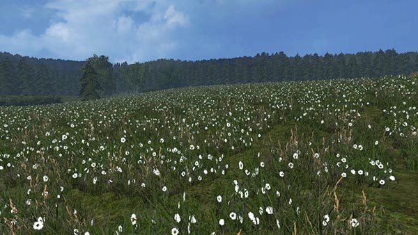 Grass texture v 1.0 [SP] 2