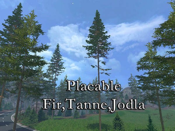 fir-placeable-v-1-0-mp